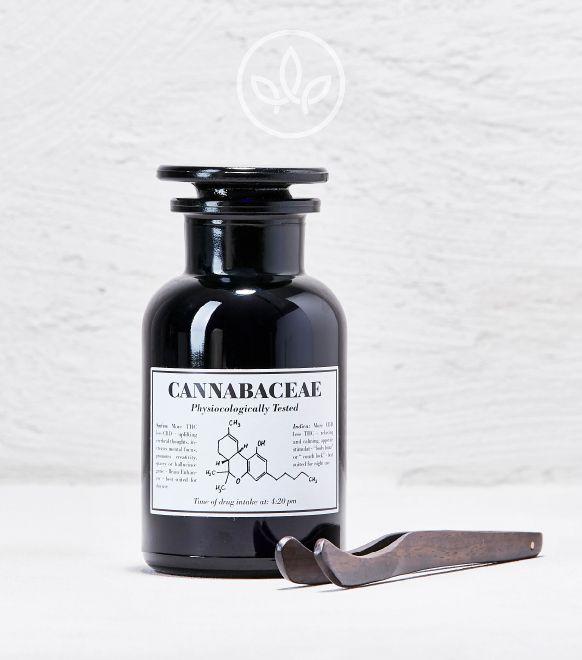 Mary Purple Cannabis Aufbewahrung Glas